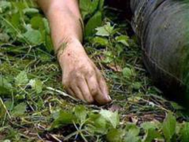 Один мужчина был убит и один ранен в жестокой драке четырех пастухов из-за спора о пастбище на Ставрополье