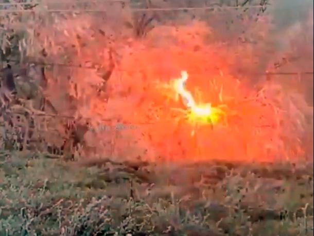Провода ЛЭП массово воспламеняют замершие деревья в Ставрополе