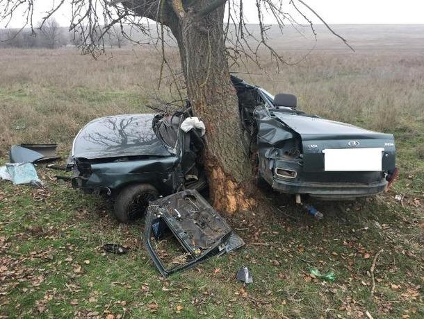 «Ладу» разорвало пополам вДТП сдеревом наСтаврополье, шофёр умер