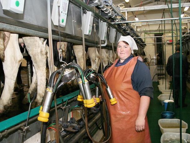 Непрокисающие проблемы: что пьют ставропольчане под видом молока