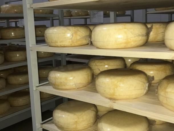 50 тонн контрафактного сыра изъяли на Ставрополье