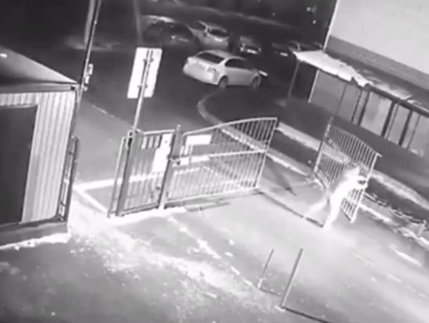 «Жилец против автоматических ворот»: комичные попытки ставропольца покинуть двор попали на видео