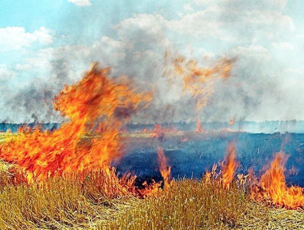 Во время уборки зерновых произошел 31 пожар на Ставрополье