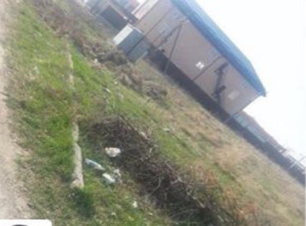 Крысы атаковали частные дворы и дома из-за магазинного мусора в поселке близ Пятигорска