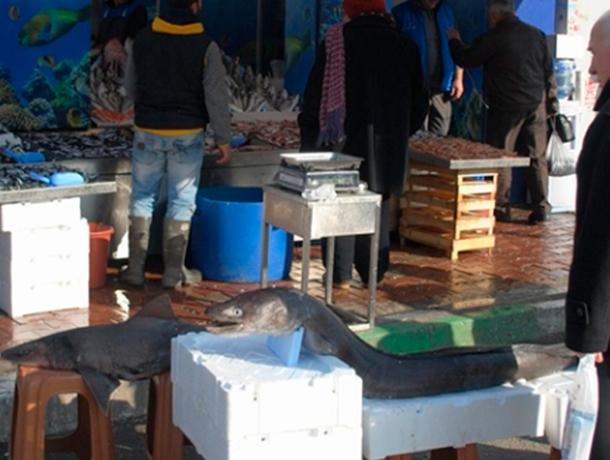 С незаконной торговлей ежедневно борются в Ессентуках