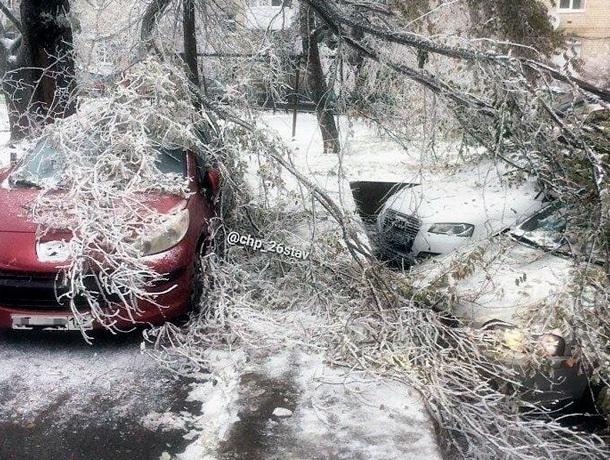 Обледенелые деревья падают на улицах Ставрополя