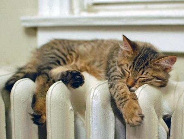 «Да прибудет тепло»: 15 октября стартовал отопительный сезон в Ставрополе