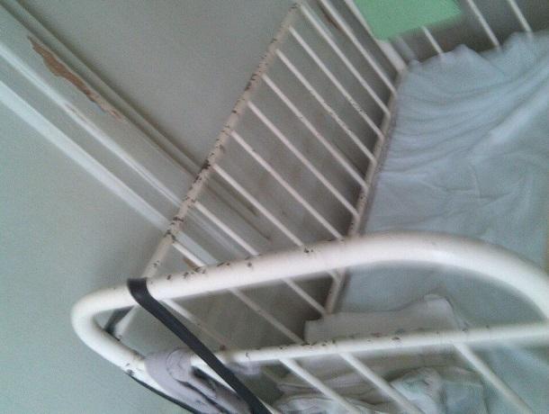 Больница в ужасном состоянии, почему наши дети должны лечиться в таких условиях? – жительница Пятигорска