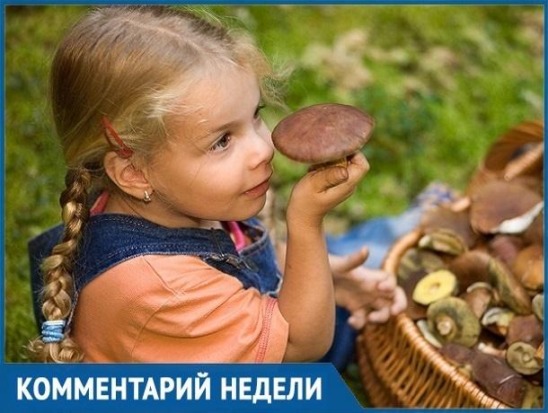 «Сезон открыт»: как отличить ядовитый гриб от хорошего рассказал ставропольский биолог