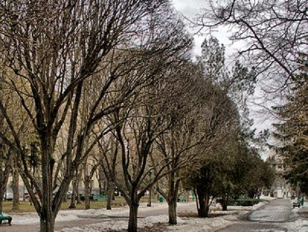 В первый день февраля  на Ставрополье ожидаются морозы и сильный ветер