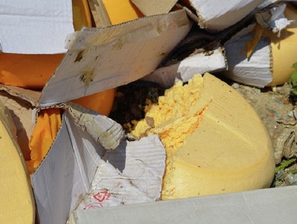 Санкционный сыр нашли во «Флагмане» в Ставрополе и уничтожили