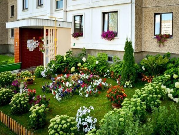Ставропольчане готовятся к фестивалю цветников