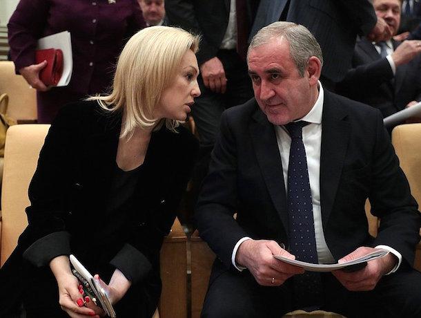 В Госдуме обсудили закон Тимофеевой – ставропольский винодел потребовал ограничить иностранные поставки