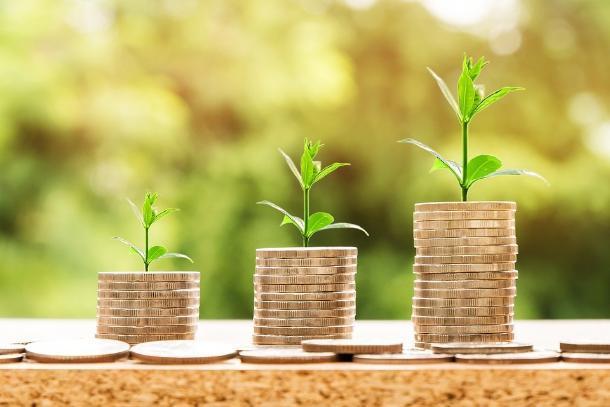Инфляция не успевает за ростом зарплат ставропольских аграриев