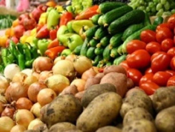 Продукты с фермерских полей и подворий можно будет купить на очередной ярмарке в Ставрополе