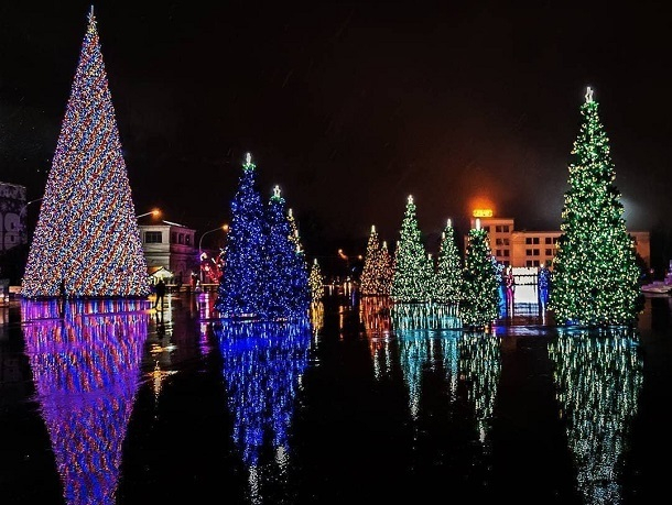 Первая в мире интерактивная елка пройдет на главной площади Ставрополя