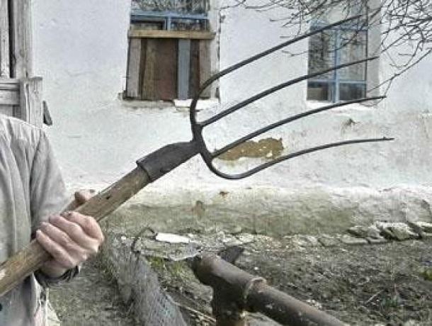 Управляющий конюшней на Ставрополье решил воспитать пьяного конюха с помощью вил