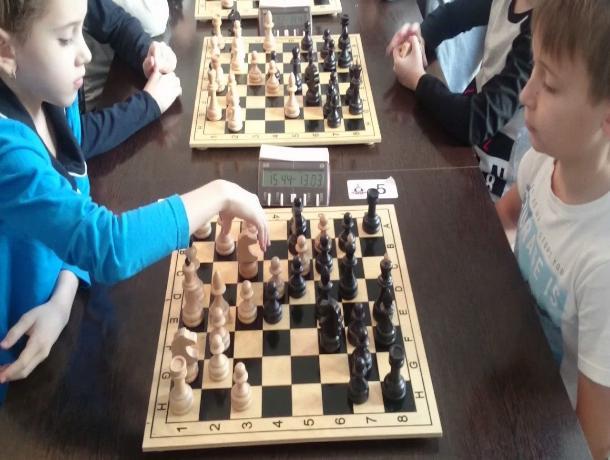 Краевой чемпионат по шахматам выиграл восьмилетний ставрополец