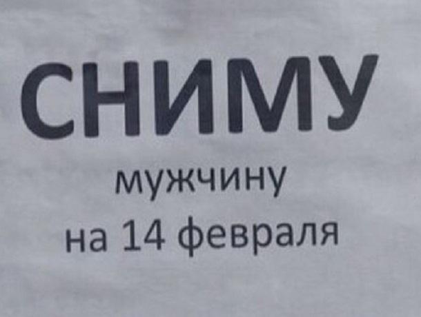 «Сниму мужчину на 14 февраля»: находчивая ставропольчанка необычно подошла к выбору партнера на День влюбленных