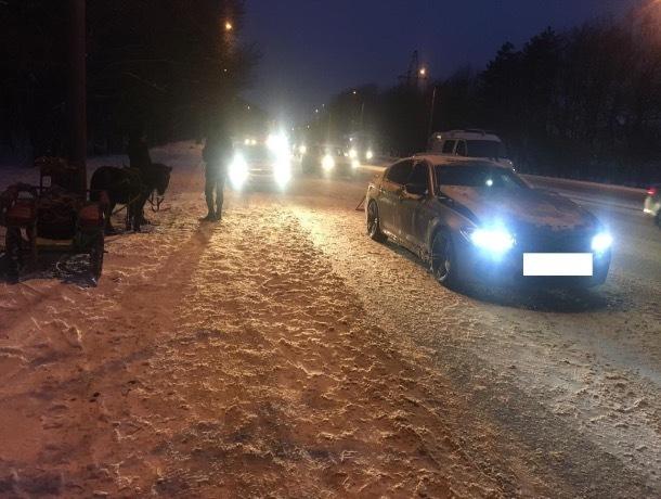 40-летняя женщина на повозке с лошадью пострадала в ДТП с «БМВ» в Ставрополе