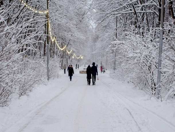 Мокрый снег с дождем и сильный ветер ждут Ставрополь 25 декабря