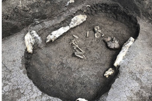 На окраине Ставрополя обнаружили древнее захоронение знатной женщины