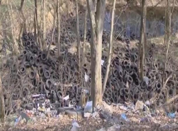 Кладбище старых покрышек убрали четырьмя «КамАЗами» близ Ставрополя