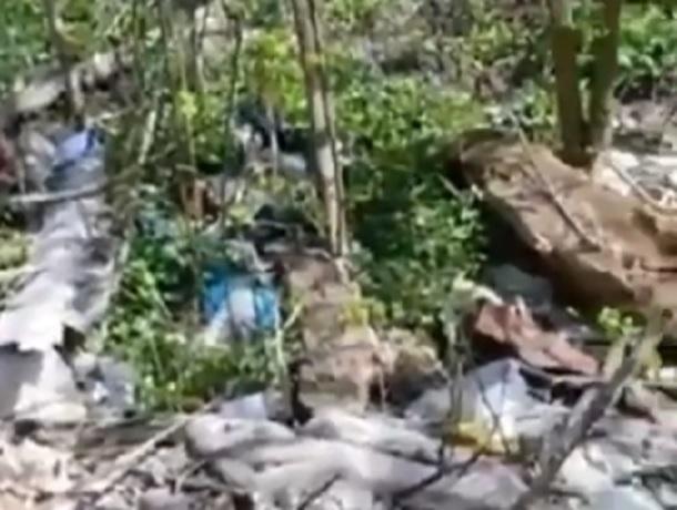 «Яр с водой на Калинина превратили в свалку, власти не реагируют», - жительница Ставрополя
