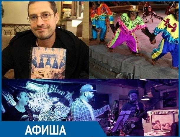 «Волшебная тайна Нового года» и «The new year fest»: топ самых ярких событий недели в Ставрополе