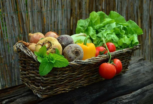 На Ставрополье собрали около 26 тысяч тонн овощей