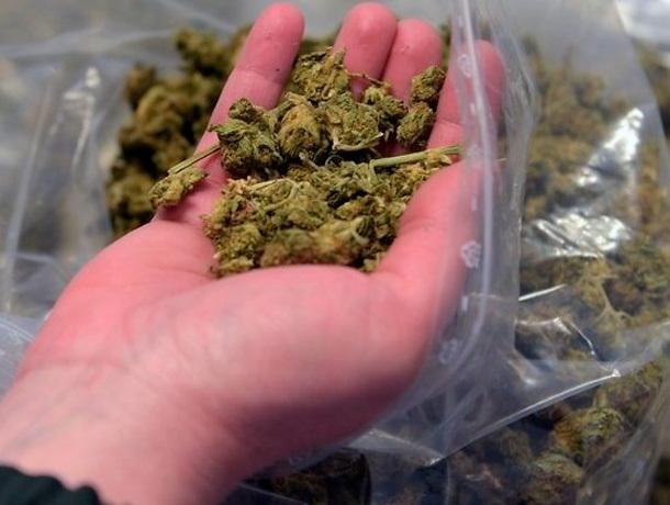 Служебная собака обнаружила марихуану в мусоре на Ставрополье