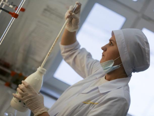 Россельхознадзор обвинил ветеринаров Ставрополья в сокрытии вспышек болезней у животных