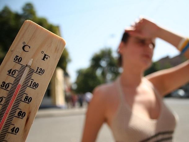 Экстренное предупреждение об аномальной жаре в 40 градусов объявлено на Ставрополье