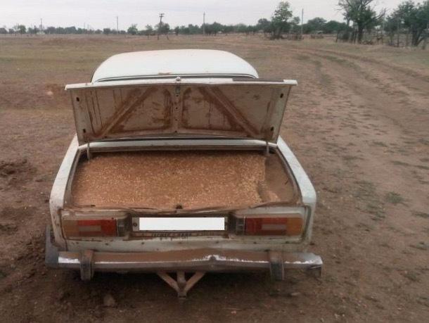 Житель Ставрополья пытался украсть со склада почти 700 кг пшеницы