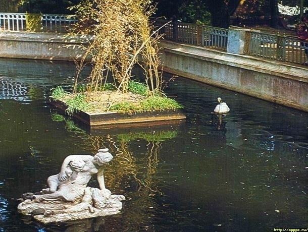 Прежде и теперь: кто теперь обитает в пруду Центрального парка Ставрополя