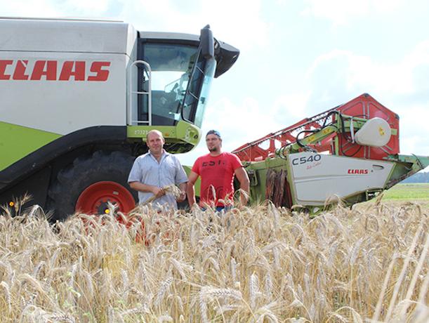 «Что мы будем делать с урожаем?», — ставропольские фермеры опасаются, что не заработают на зерне