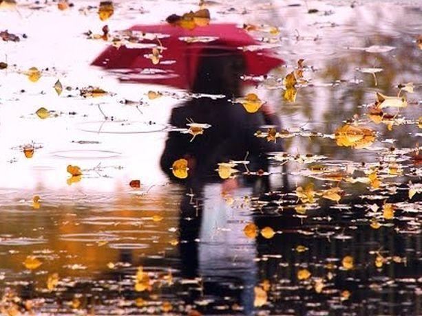 Дожди и холод испортят погоду в среду на Ставрополье