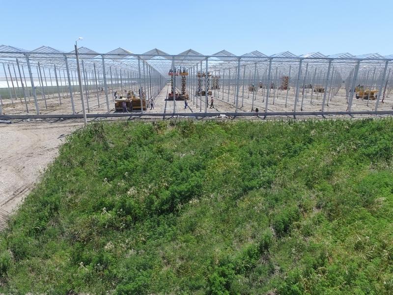 Ставропольским аграриям выделят более тысячи рабочих мест