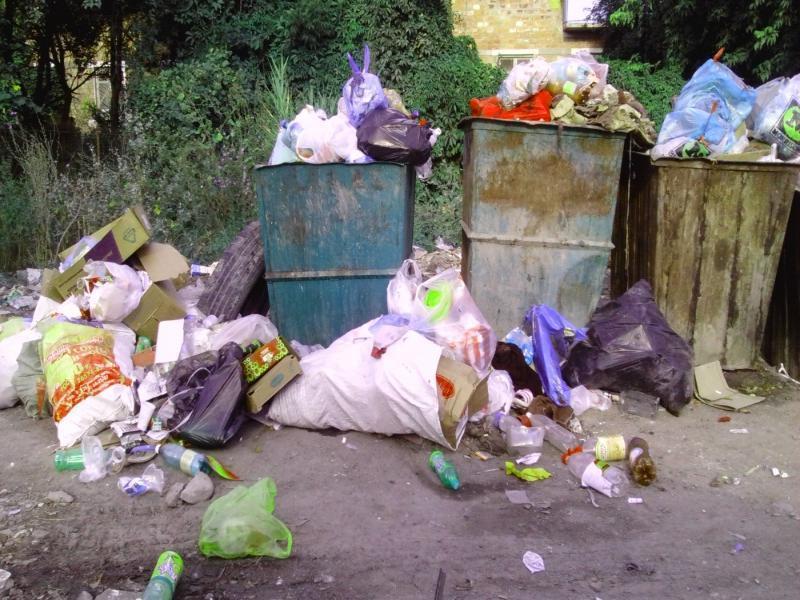 В одном из городов Ставрополья вывезут весь мусор