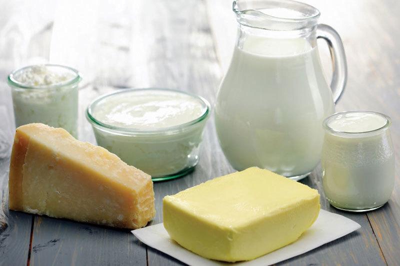Новый молокозавод появится в 2016 году на Ставрополье