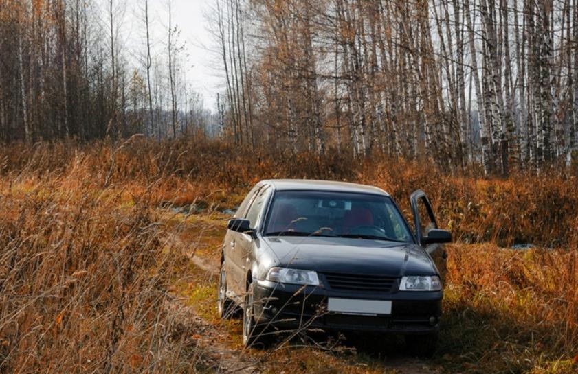 В Ставрополе водитель пытался скрыться от автоинспекторов в лесу