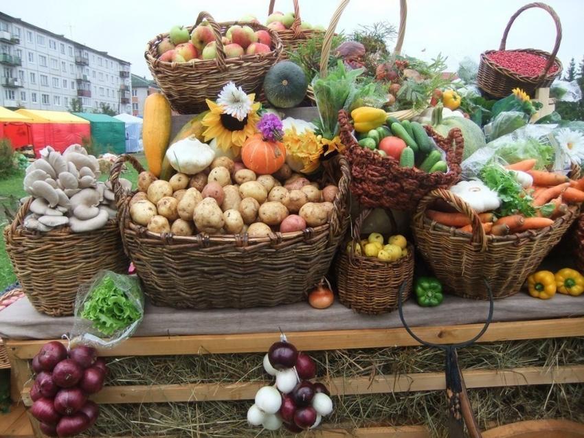 Всубботу вСтаврополе снова будет ярмарка товаров поставщиков края