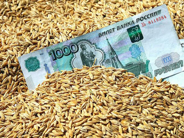 Зерновых мошенников приговорили больше чем к трем годам колонии строгого режима на Ставрополье