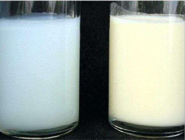 Молочный напиток синеватого цвета официально разрешили называть «молоком»