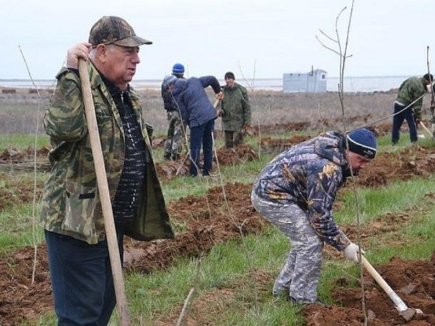 Доход ставропольских фермеров упадет на треть из-за высоких цен на топливо