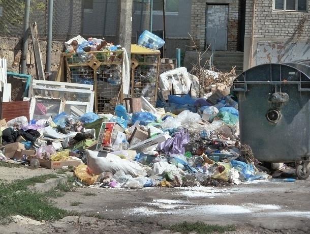 Жестко штрафовать за загрязнение контейнерных площадок будут жителей и компании Кисловодска