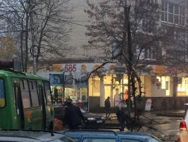 Рухнувшее дерево повисло на проводах над дорогой и попало на видео в Ставрополе