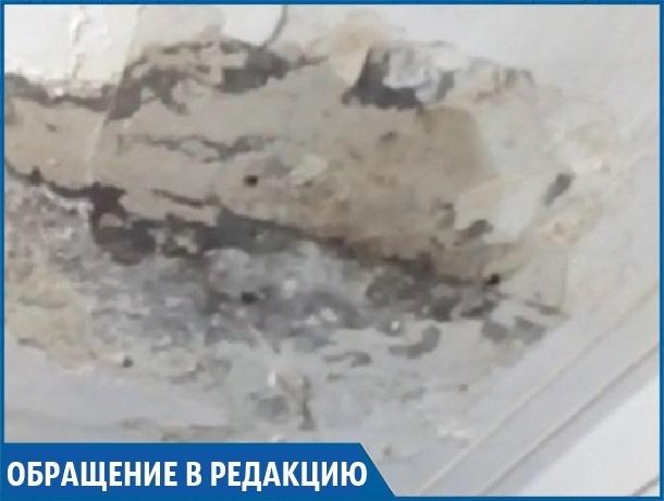 «Крыша течет и нас заливает, а еще даже дождей не было», - жители ставропольского общежития