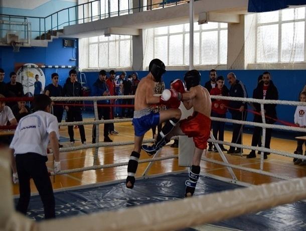 Лучшие представители кикбоксинга Ставрополья померились силами в ринге